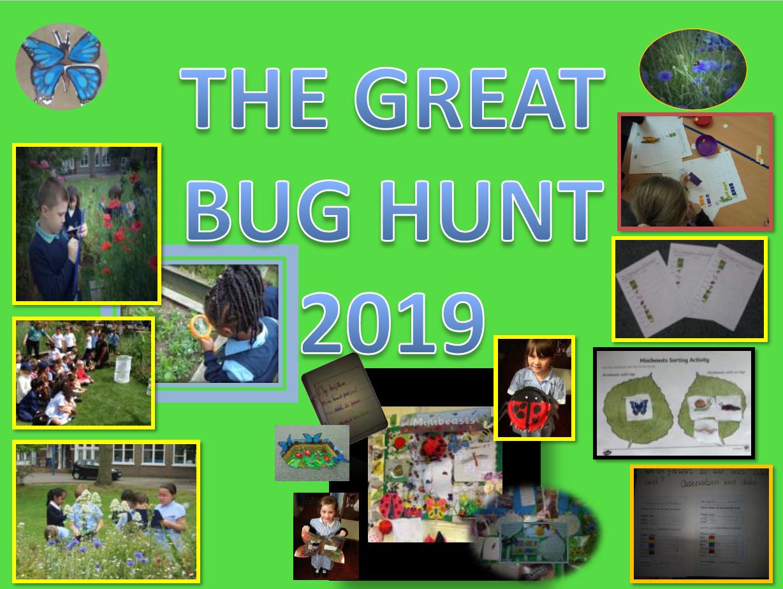 bug hunt 2019