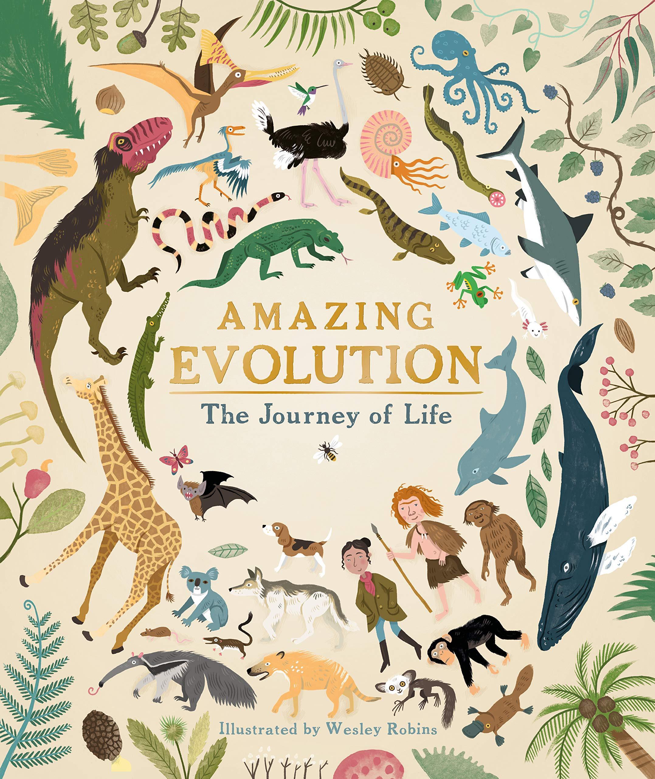 Amazing Evolution Cover