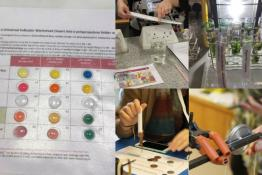 practical science activities