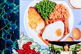 Proteins: Unilever Educational Booklet